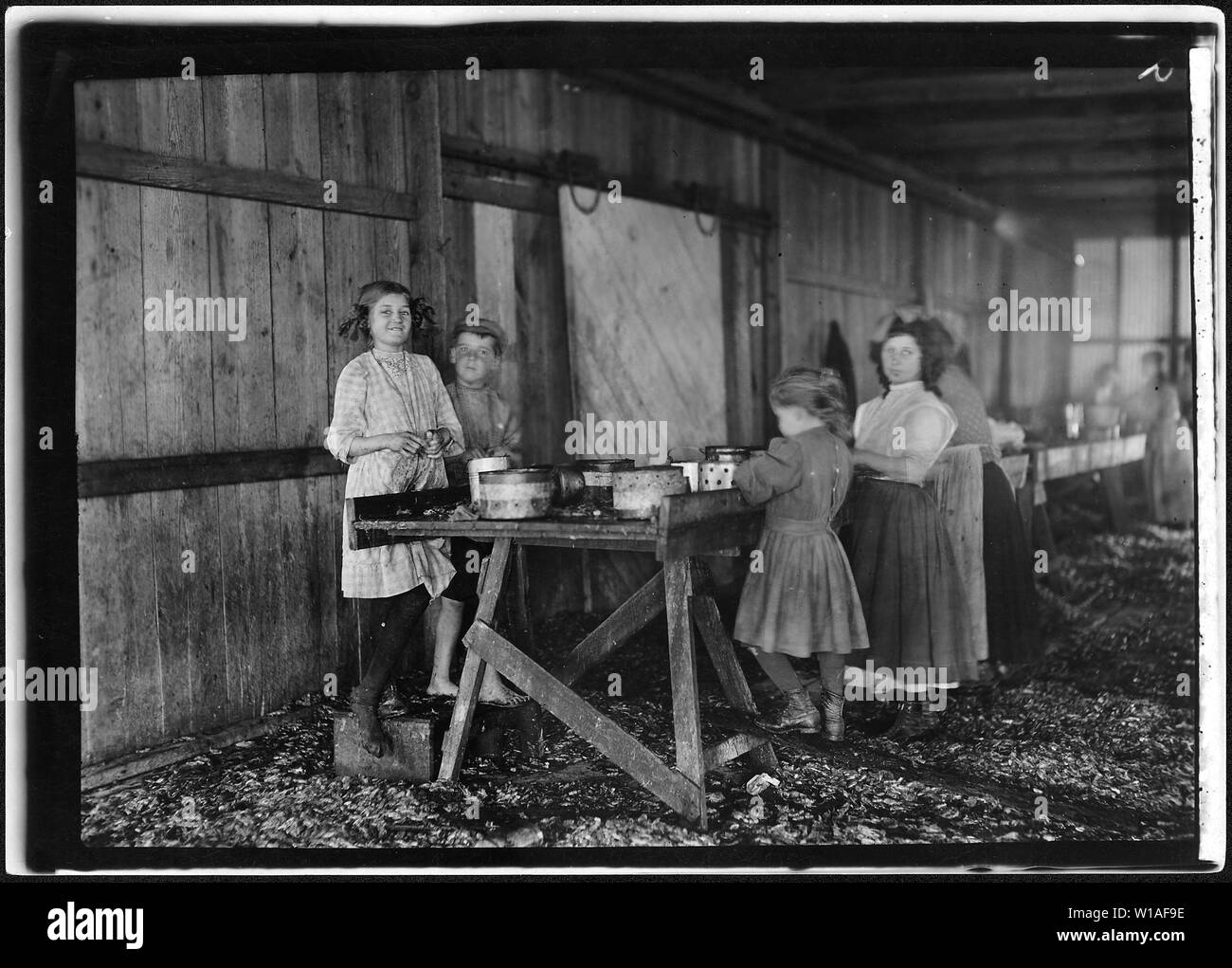 A group of shrimp pickers in Peerless Oyster Co., working during short noon recess. Many workers, including the children, utilize part of the lunch time this way, when there is lunch time allowed. In many canneries, they snatch their lunches as best they may while the work goes on just the same and others are ahead of them. Bay St. Louis, Miss. - Stock Image