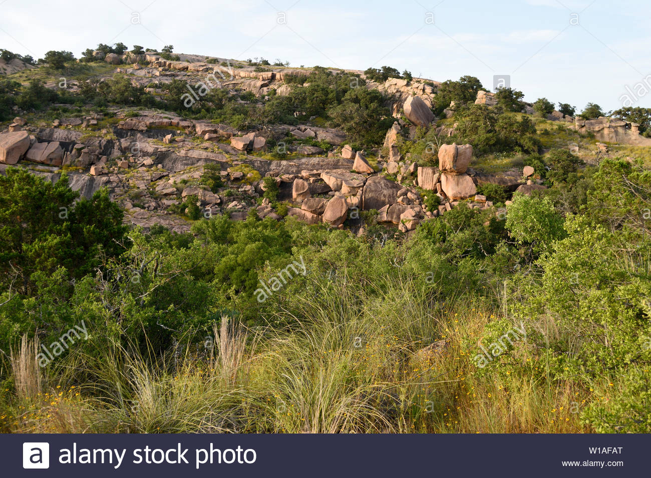 Texas Topography. Topographical relief in the Texas Hill Country. Texas Hill Country Topography. Topography of the Llano Uplift at Enchanted Rock. - Stock Image