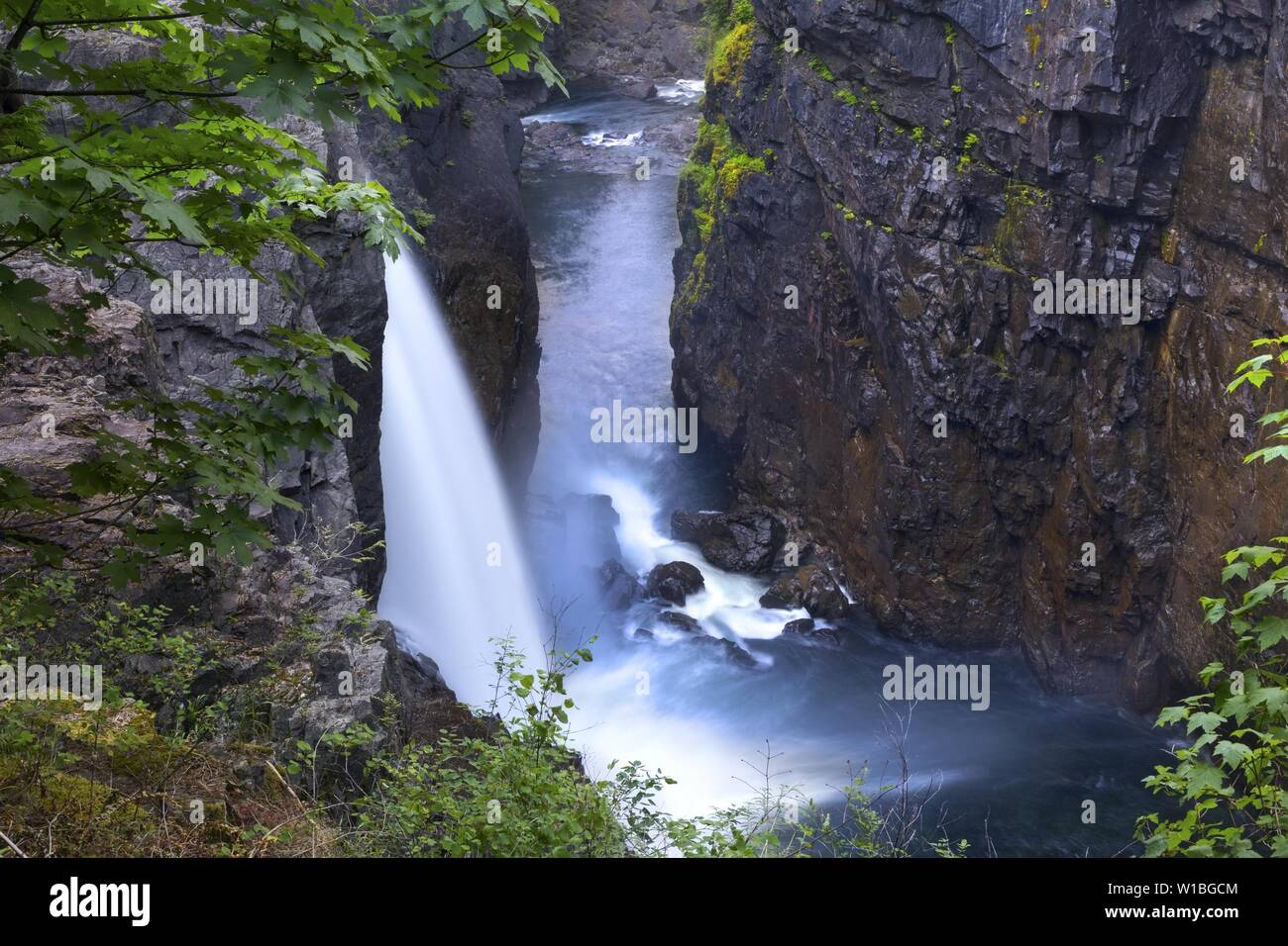 Scenic Landscape View of High Waterfall Water Stream Cascade Flowing to Rock Canyon in Elk Falls Provincial Nature Park on Vancouver Island Stock Photo