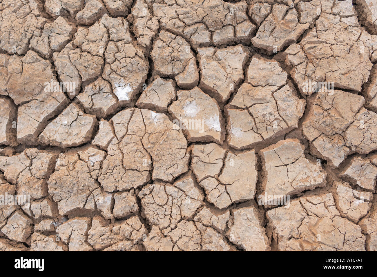 No Hot Water >> Drought The Ground Cracks No Hot Water Lack Of Moisture Top