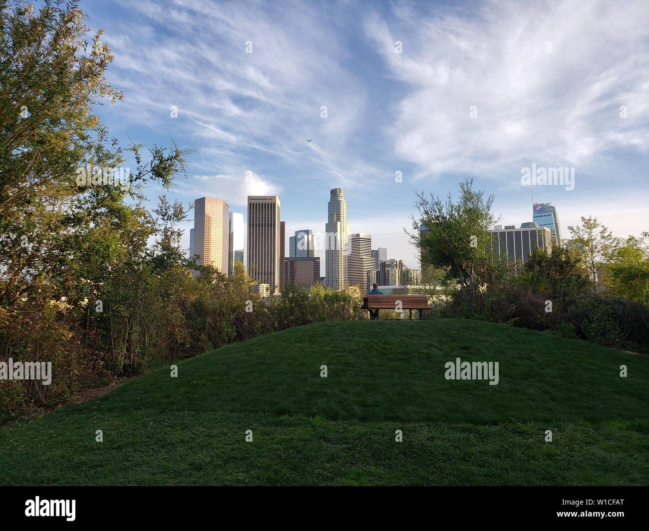 Spectacular view of downtown Los Angeles from a green park with a hill and a bench, Vista Hermosa National Park. Stock Photo