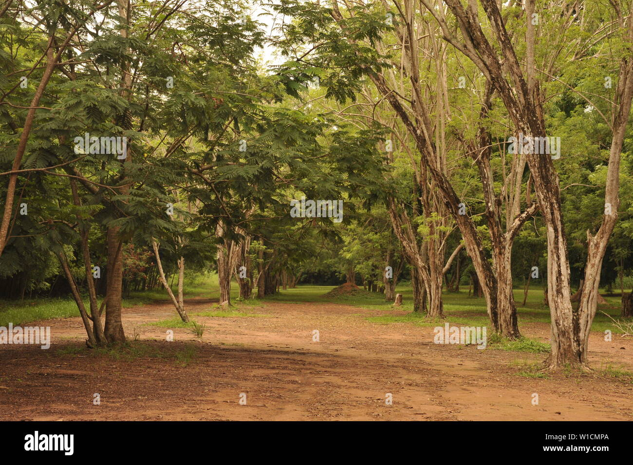 Legon High Resolution Stock Photography And Images Alamy