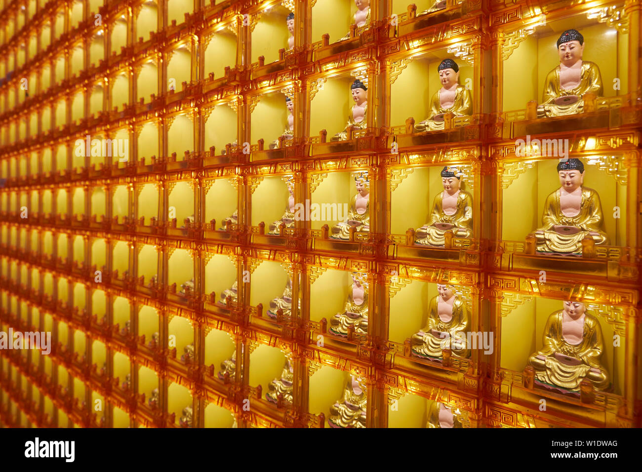 A wall of golden Buddhas in their own boxes inside the Memorial Shrine building at the Che Sui Khor Chinese temple in Kota Kinabalu, Borneo, Malaysia. - Stock Image