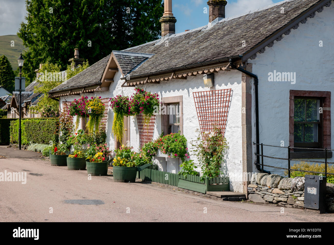 A beautiful traditional British  whitewash cottage decorated with flowers and hanging baskets on a sunny day - Stock Image