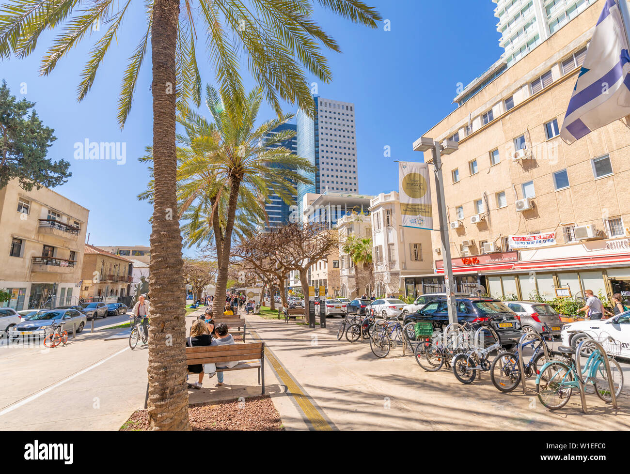 View of palm trees and walkway on Rothschild Boulevard, Tel Aviv, Israel, Middle East - Stock Image