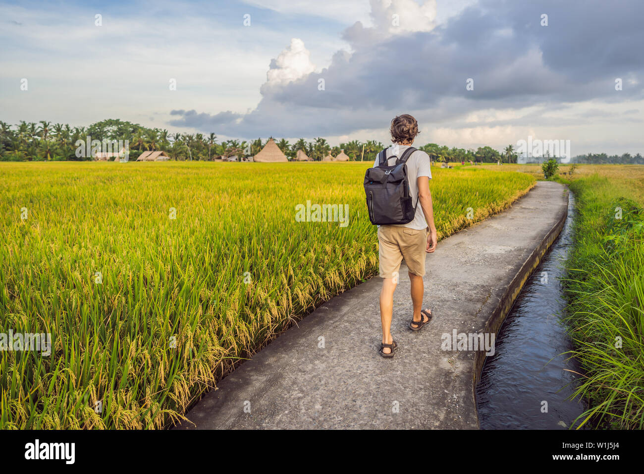 Male tourist with a backpack goes on the rice field - Stock Image