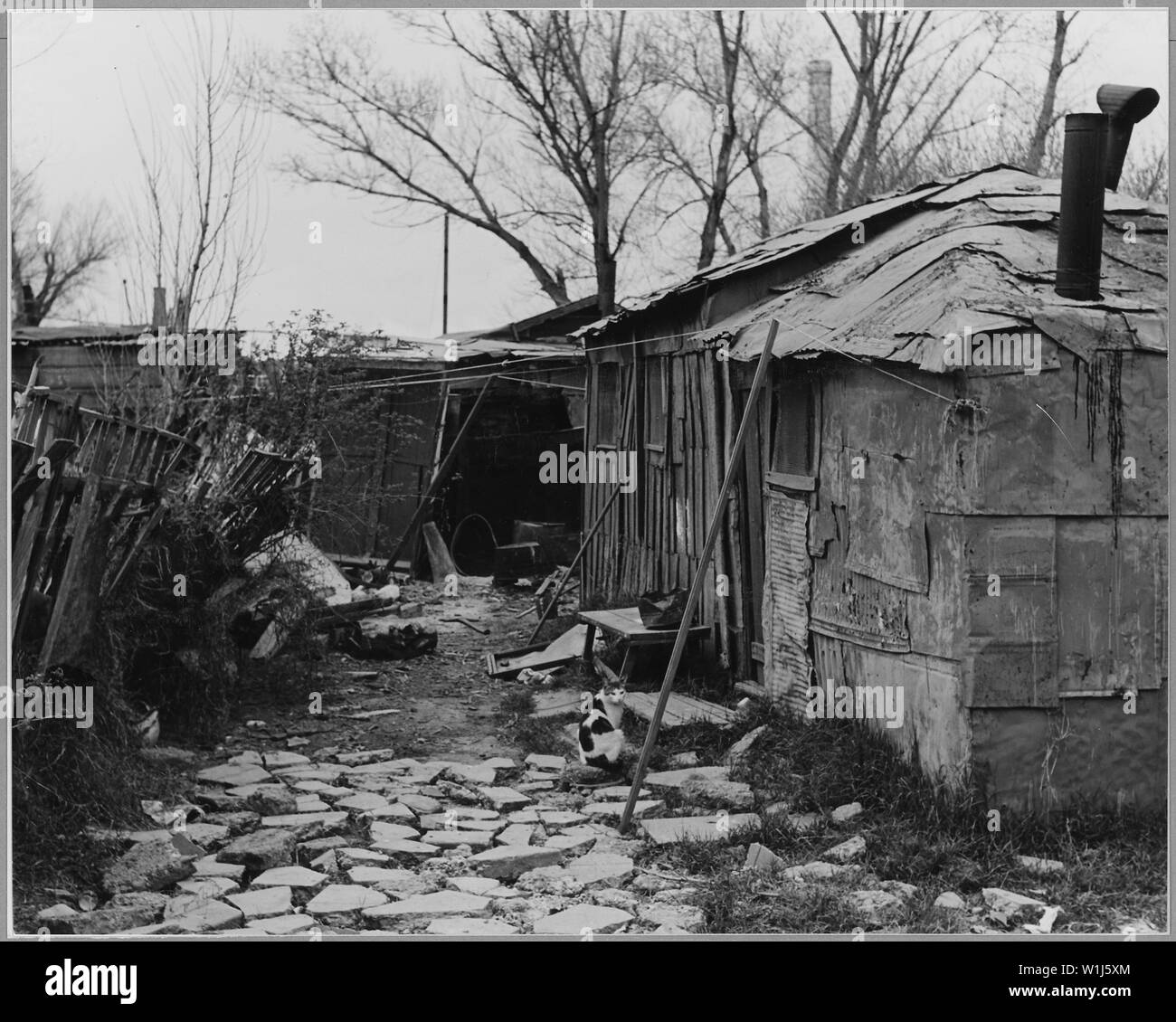 Sacramento, California. Home in Louis' Camp -- shows effort toward neatness and order.; Scope and content:  Full caption reads as follows: Sacramento, California. Home in Louis' Camp -- shows effort toward neatness and order. - Stock Image