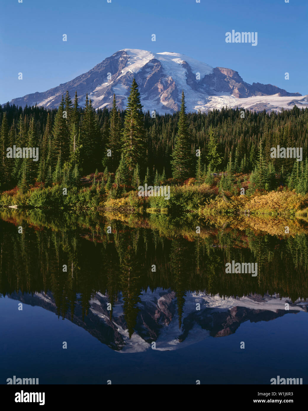 USA, Washington, Mt. Rainier National Park, Mt. Rainier, autumn colored huckleberry and evergreen forest are mirrored in Reflection Lake in evening. - Stock Image
