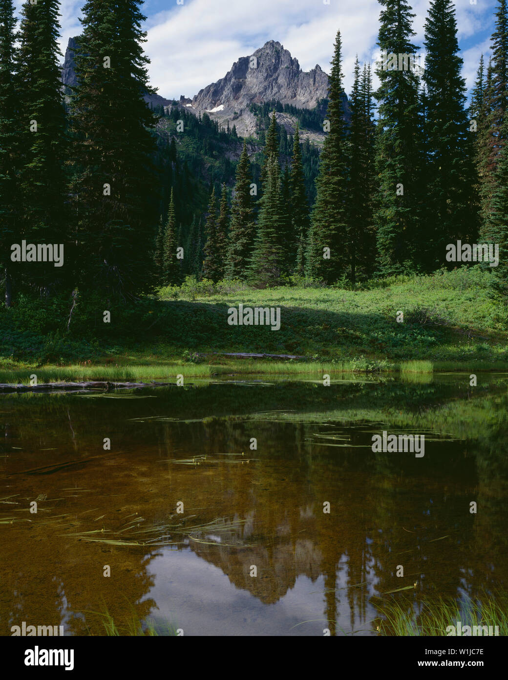 USA, Washington, Mt. Rainier National Park, Pinnacle Peak rises beyond Reflection Lakes. - Stock Image
