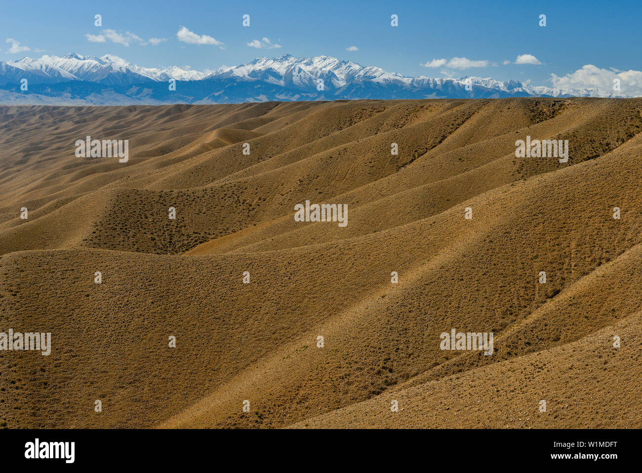 Desert landscape with boulders mountains, snow-covered Tien Shan mountains in the background, Kolsay Lakes National Park, Tien Shan Mountains, Tian Sh Stock Photo