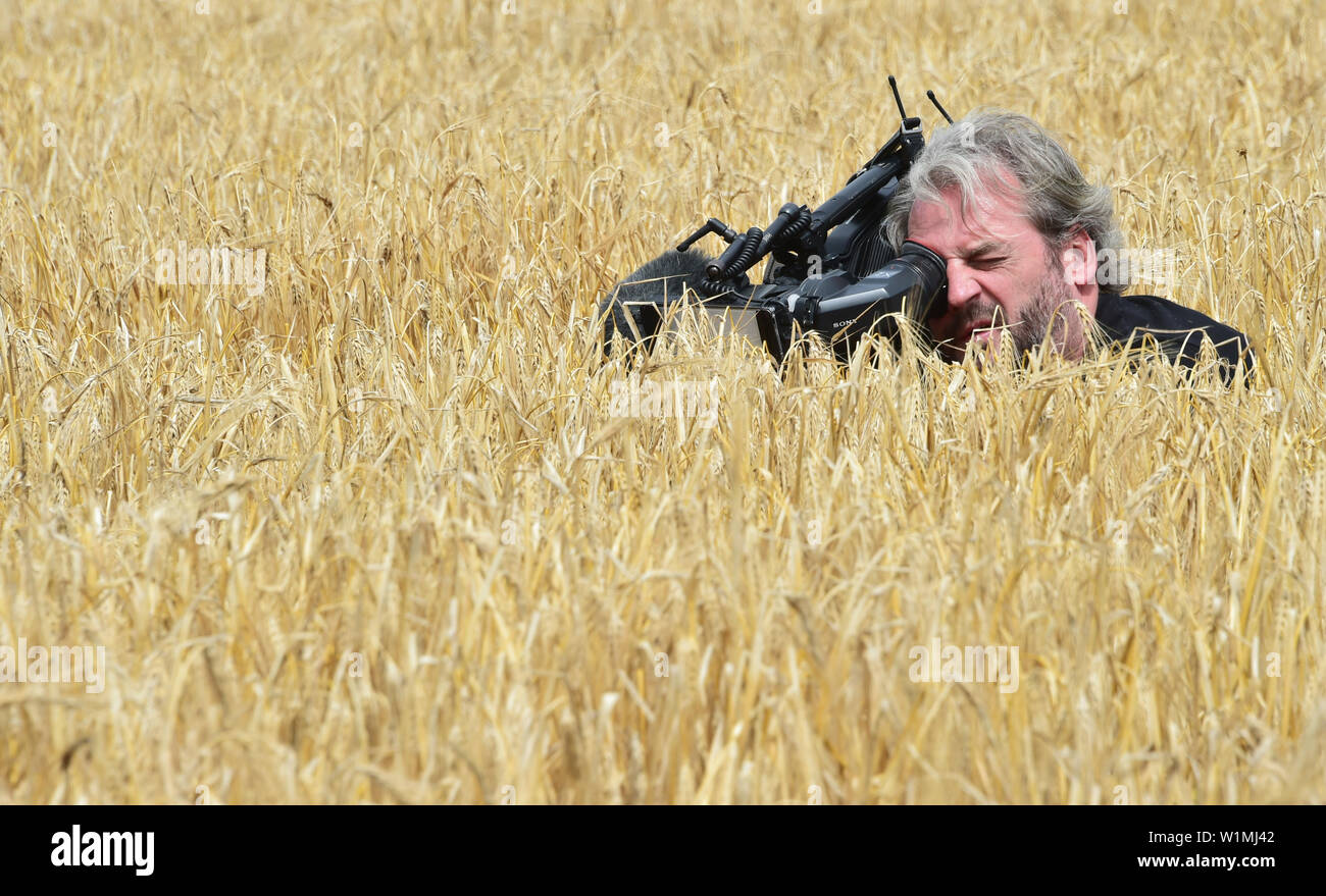 03 July 2019, Brandenburg, Dallgow-Döberitz: A cameraman films the winter barley on a Brandenburg farm during the press conference on the start of the harvest test. Late frosts and drought are expected to cause large crop losses. Photo: Bernd Settnik/dpa-Zentralbild/dpa - Stock Image