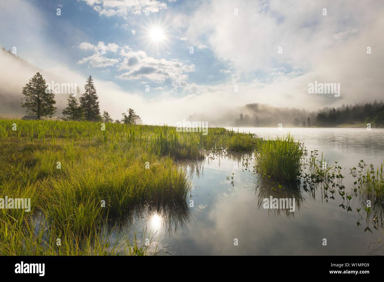 Fog at Geroldsee, view to Karwendel, Werdenfels region, Bavaria, Germany - Stock Image