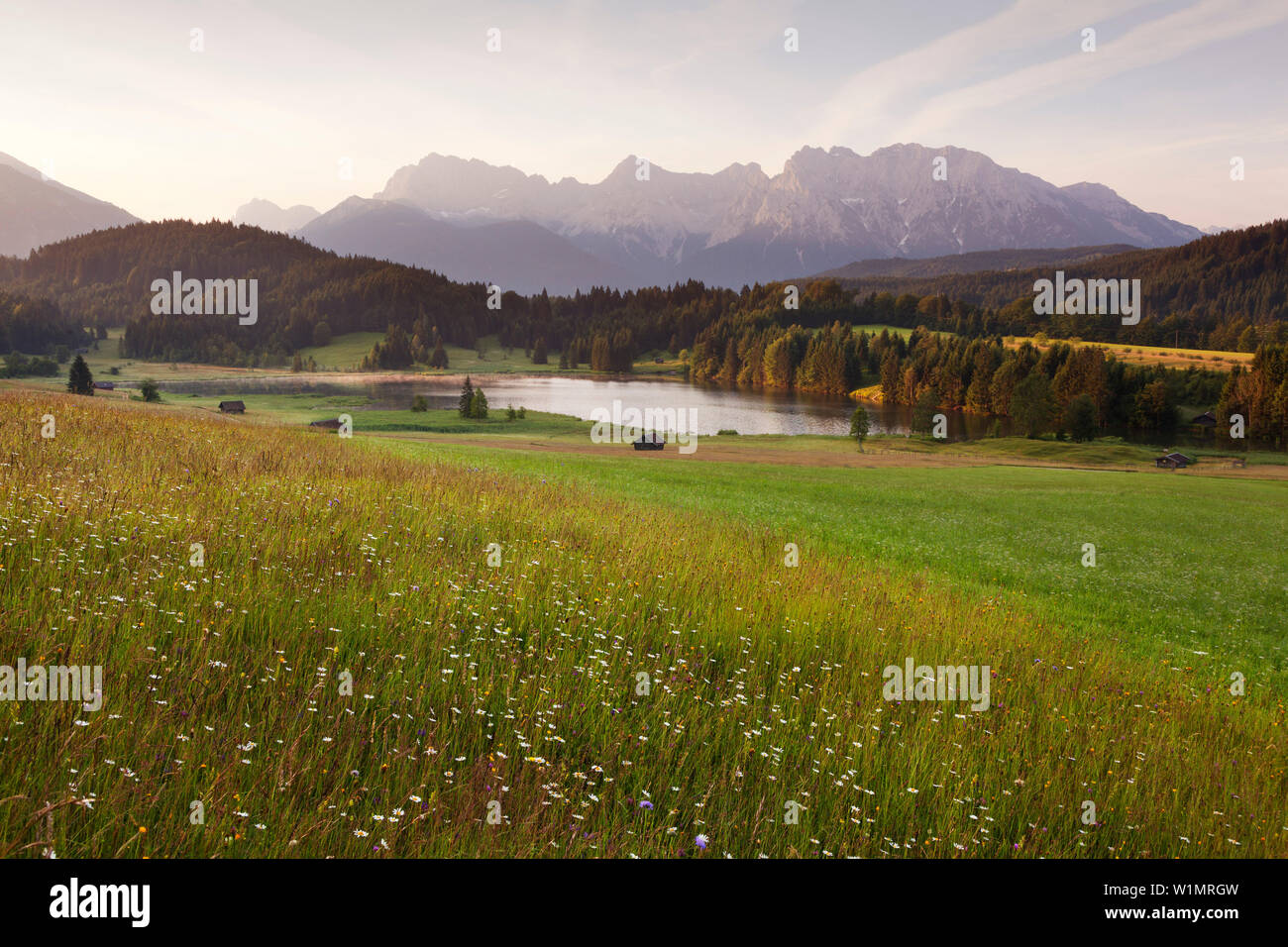 Meadow at Geroldsee, view to Karwendel, Werdenfels region, Bavaria, Germany - Stock Image