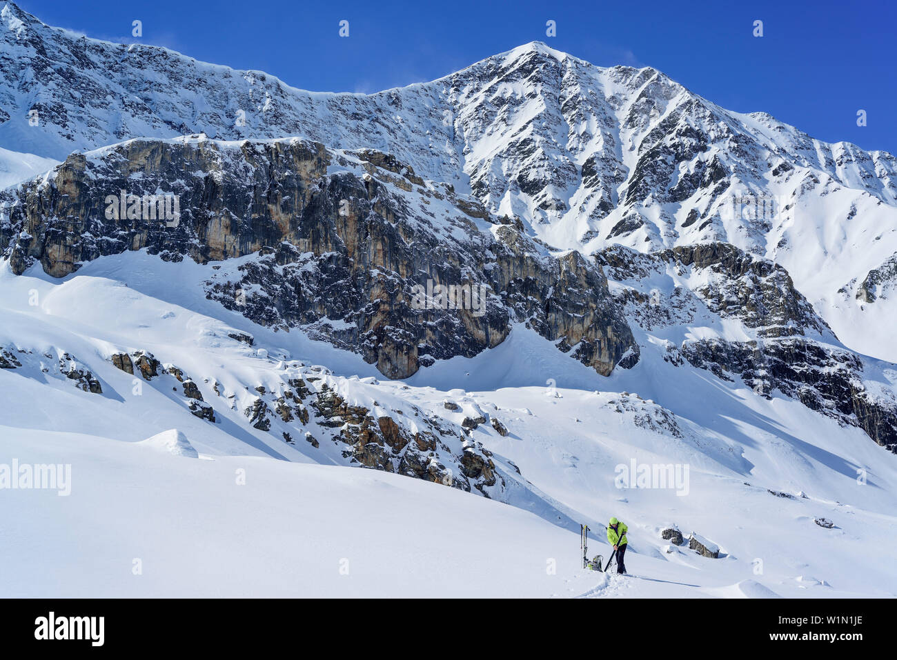 Woman back-country skiing pulling up skins, Colle di Vers, Valle Varaita, Cottian Alps, Piedmont, Italy Stock Photo