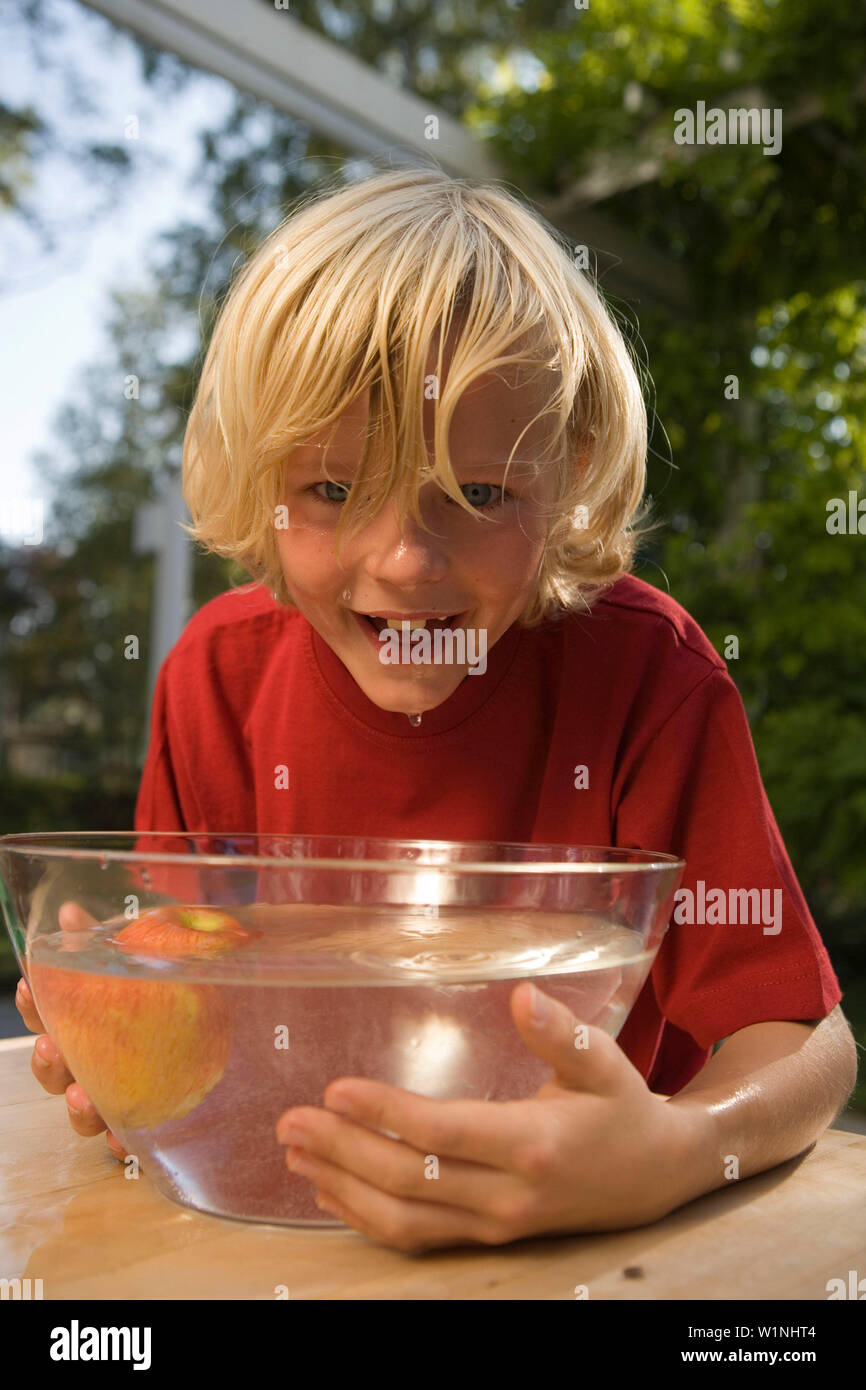 Boy bending over a dish with water and an apple, children's birthday party - Stock Image