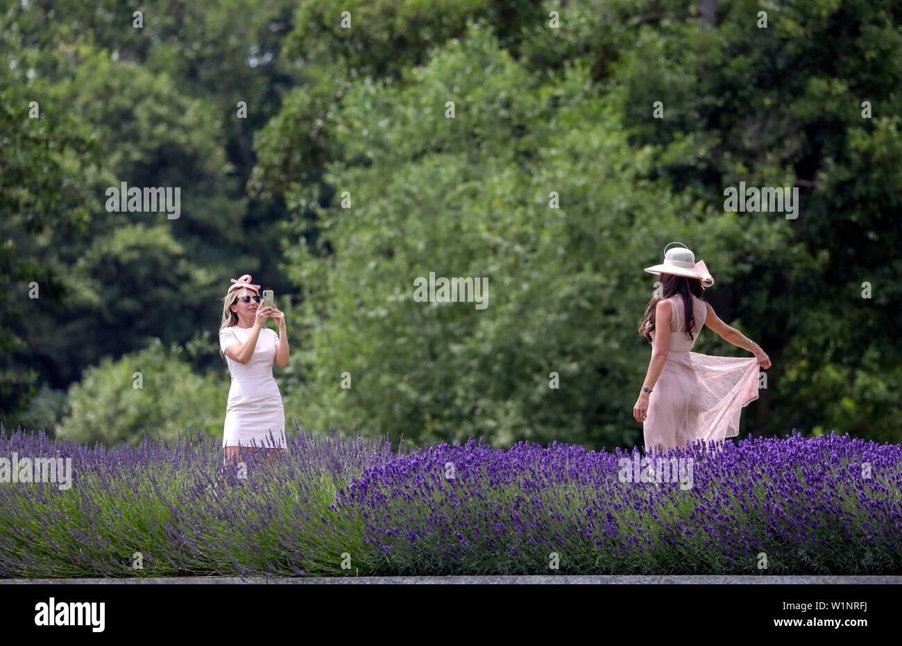 Spectators take a photograph on Temple Island on the opening day of the 2019 Henley Royal Regatta alongside the river Thames. - Stock Image