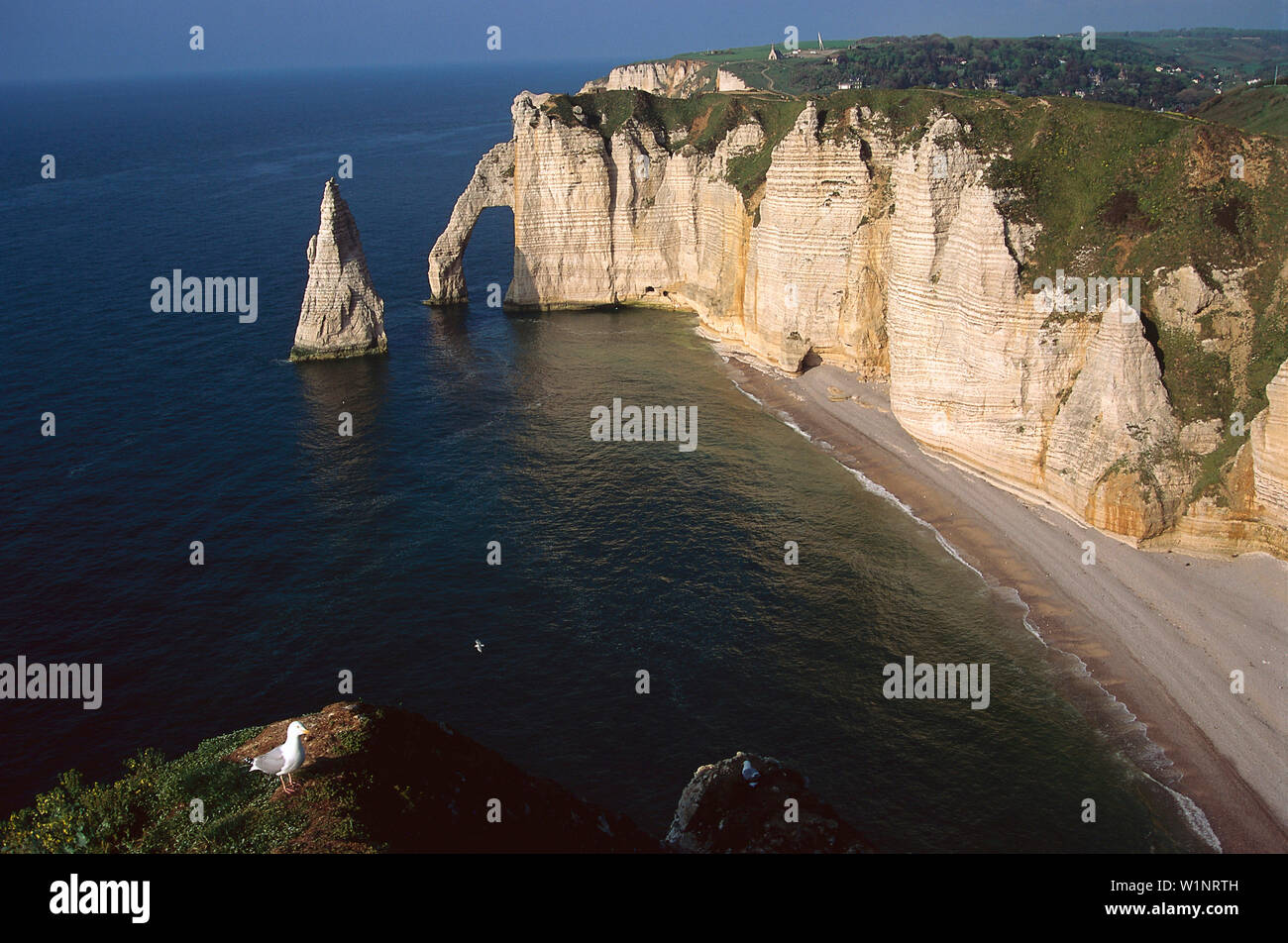 Chalk Cliff Etretat Normandy France Stock Photo 259249889 Alamy