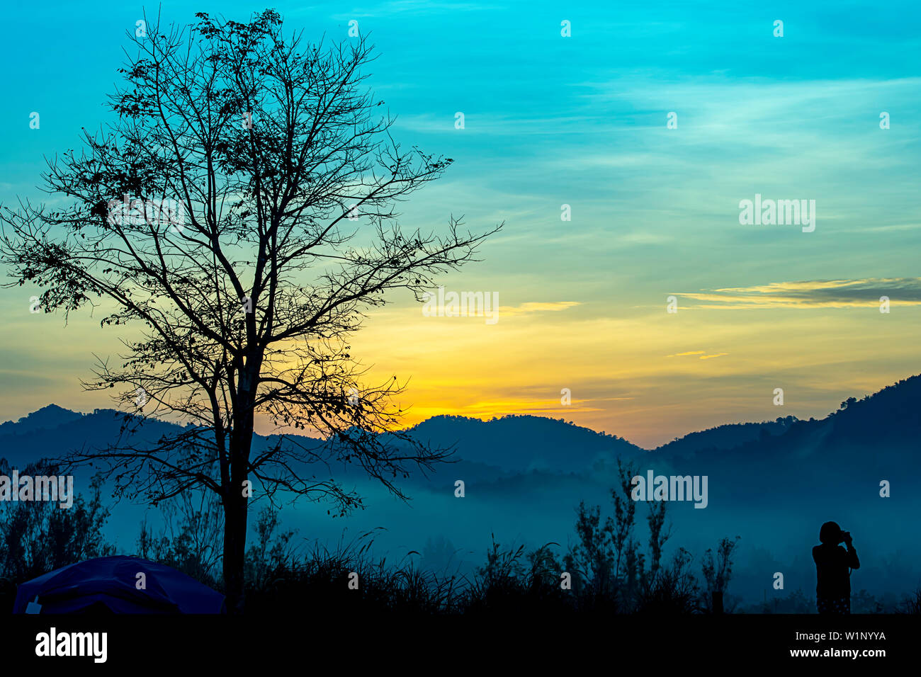 Tourists photograph the sunrise behind the mountains and the tree. Stock Photo