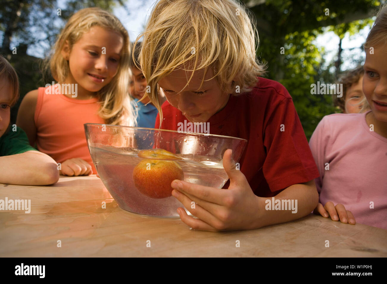 Boy with wet hair bending over a dish with water and an apple, children's birthday party - Stock Image