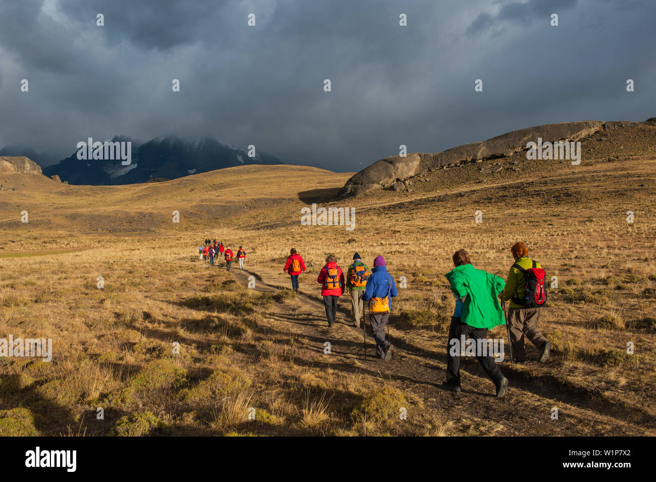 Visitors trek across the rolling hills in early morning sunlight, Torres del Paine National Park, Magallanes y de la Antartica Chilena, Patagonia, Chi - Stock Image