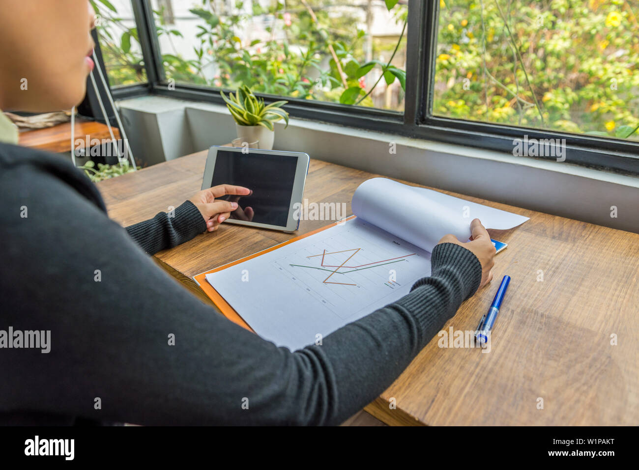 Woman using tablet and working on business graph document - Stock Image