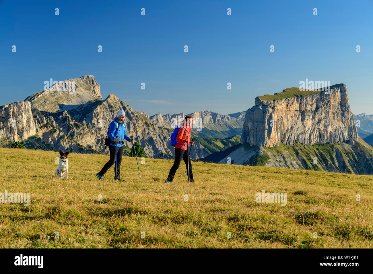 A man and a woman with dog walking on meadow with Grand Veymont and Mont Aiguille in the background, from the Tête Chevalier, Vercors, Dauphine, Dauph - Stock Image