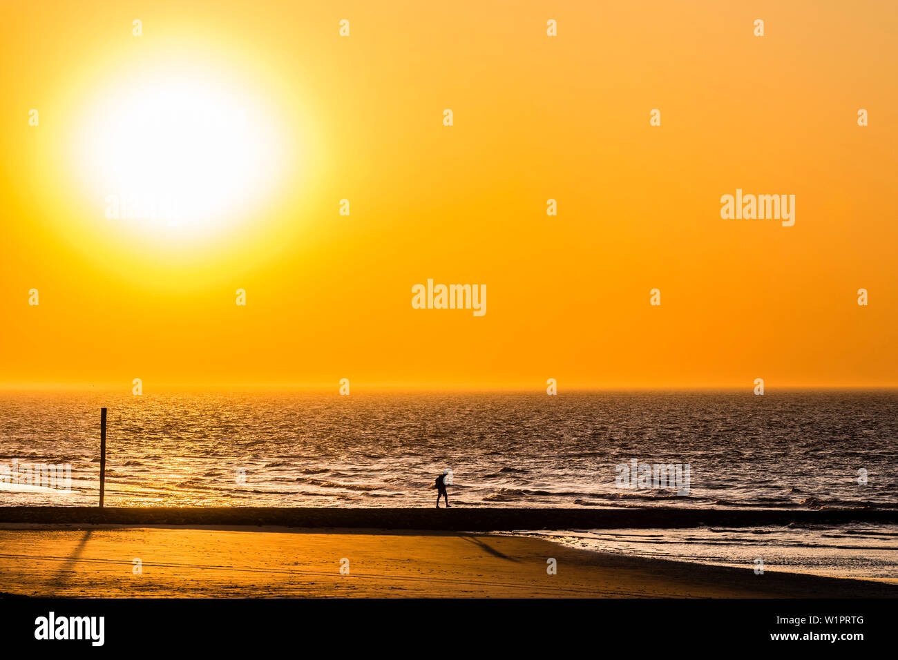 Stroller on the beach at sunset, Wangerooge, East Frisia, Lower Saxony, Germany Stock Photo