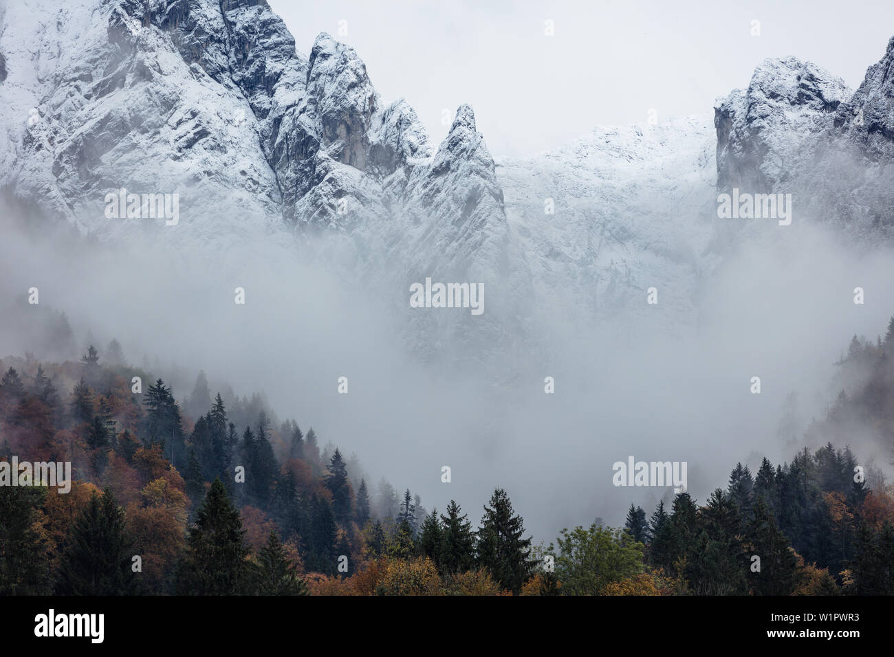 Hoher Goell and Autumn Forest, Berchtesgaden, Bavaria, Germany. Stock Photo