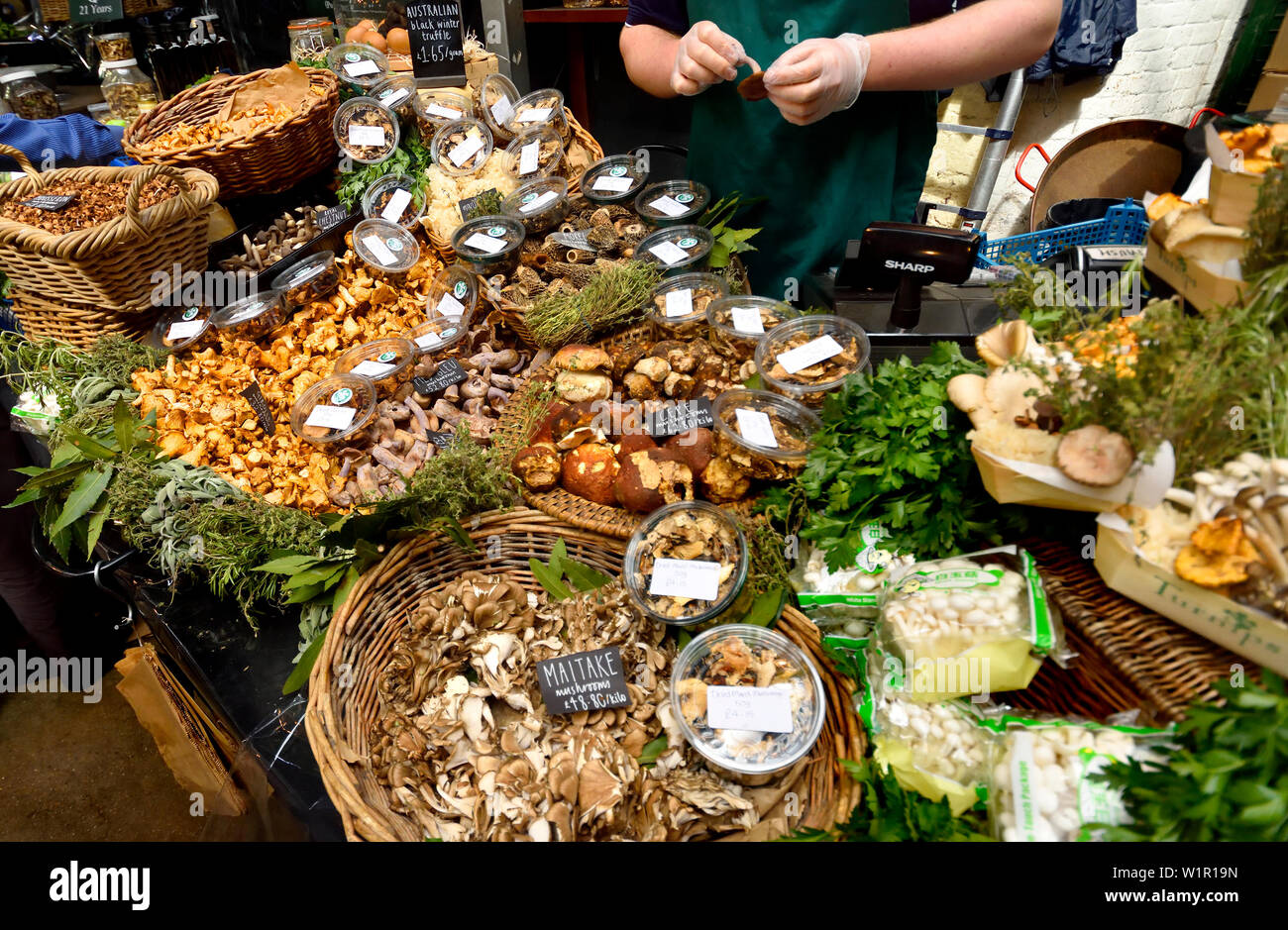 London, England, UK. Borough Market, Southwark. Stall selling mushrooms - Stock Image