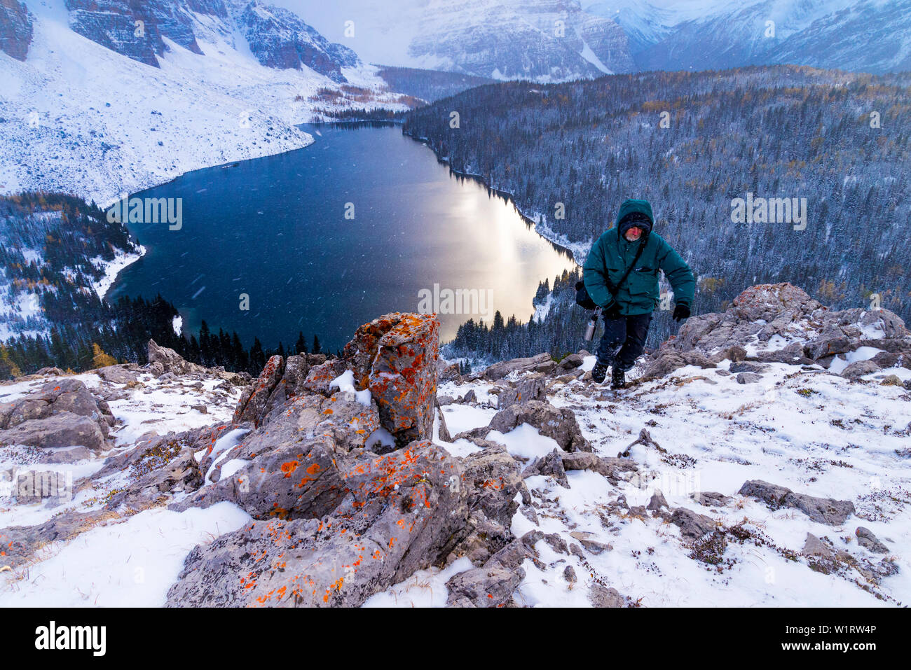 Man hiking  in winter weather conditions,  the Nublet, Mount Assiniboine Provincial Park, British Columbia, Canada Stock Photo