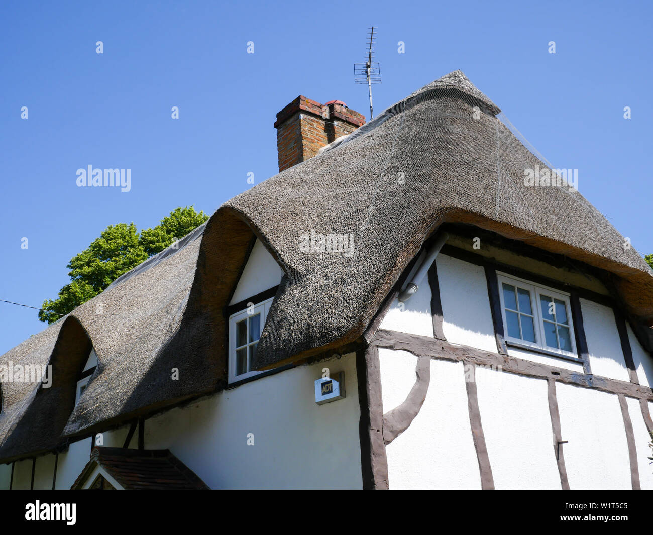 Tudor Beamed Thatched Cottage, South Stoke, Oxfordshire, England, UK, GB. - Stock Image