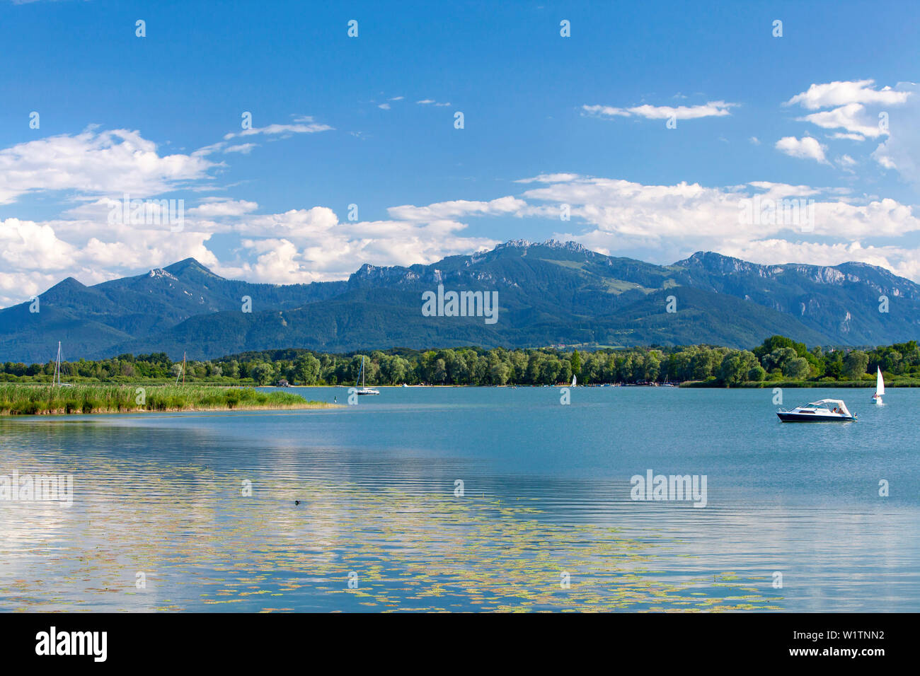 Boats on the summer Lake Chiemsee, in the foreground water lilies and reeds, the Chiemgau mountains in the background Stock Photo