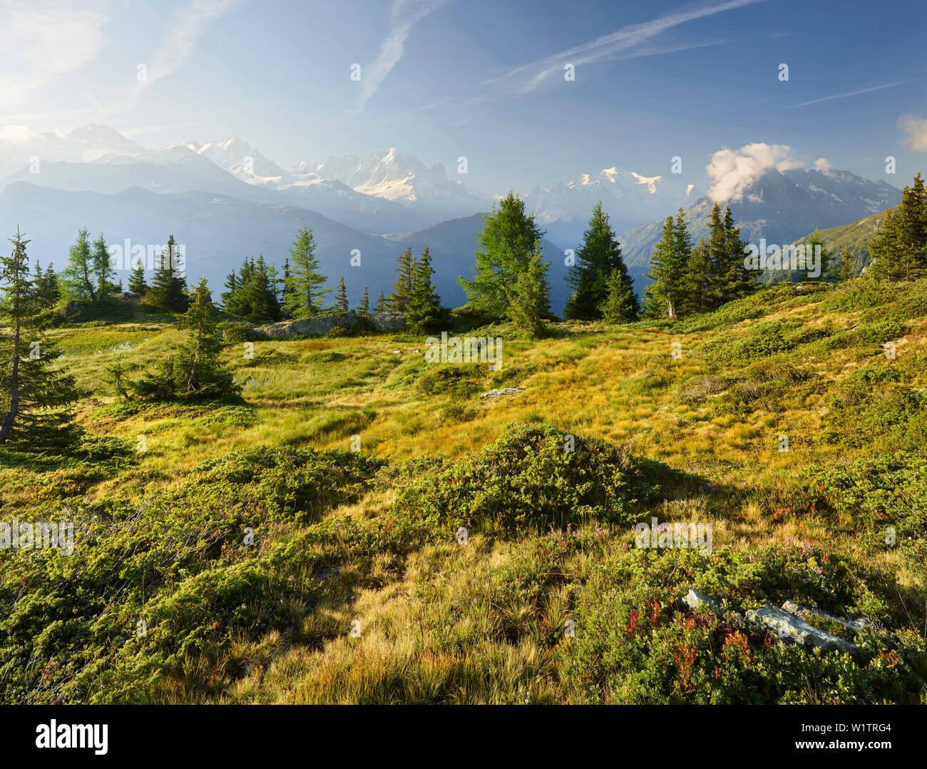 Émosson, Wallis, Schweiz (Vordergrund), Aiguille Verte, Mont Blanc, Haute-Savoie, Frankreich (Hintergrund) - Stock Image