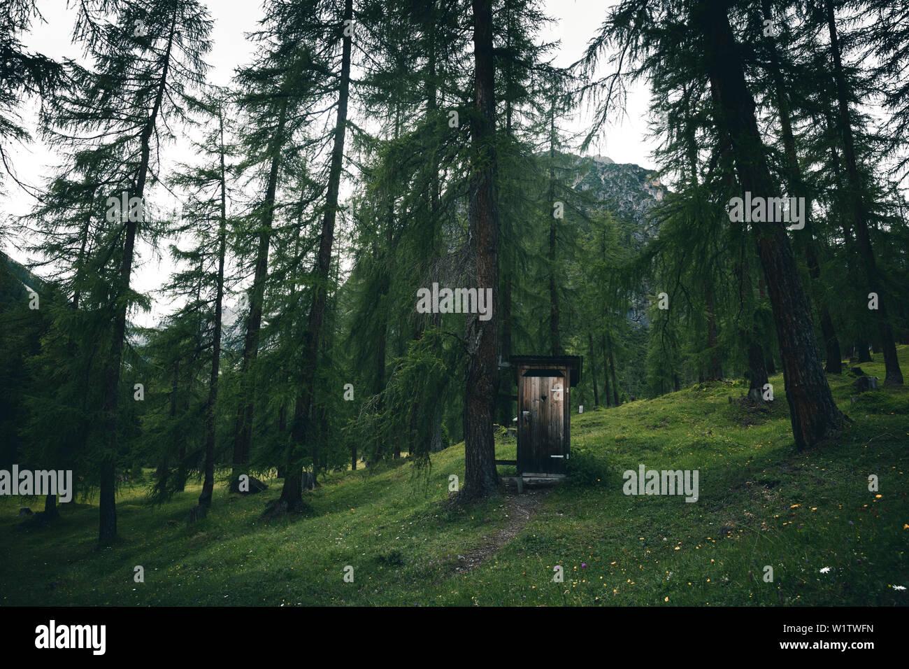 Mountain toilet in the forest, E5, Alpenüberquerung, 3rd stage, Seescharte,Inntal, Memminger Hütte to Unterloch Alm, tyrol, austria, Alps - Stock Image