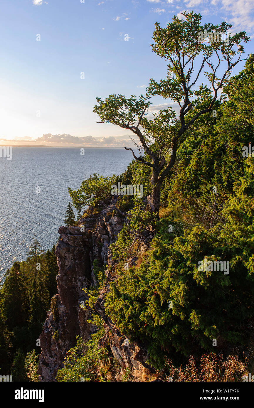Omberg High Resolution Stock Photography And Images Alamy