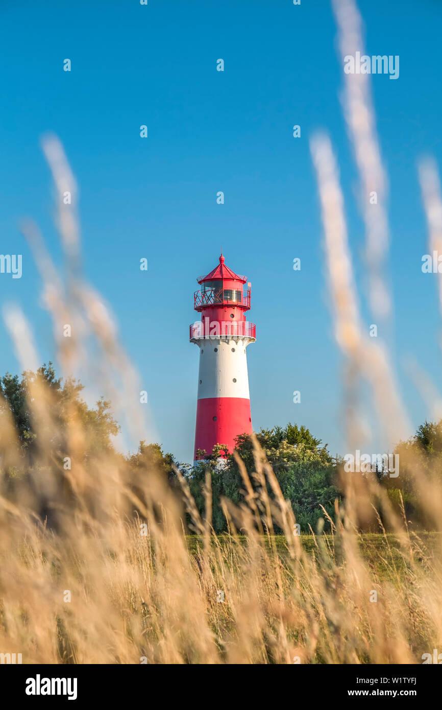 Falshoeft Lighthouse, Falshoeft, Angeln, Baltic coast, Schleswig-Holstein, Germany - Stock Image
