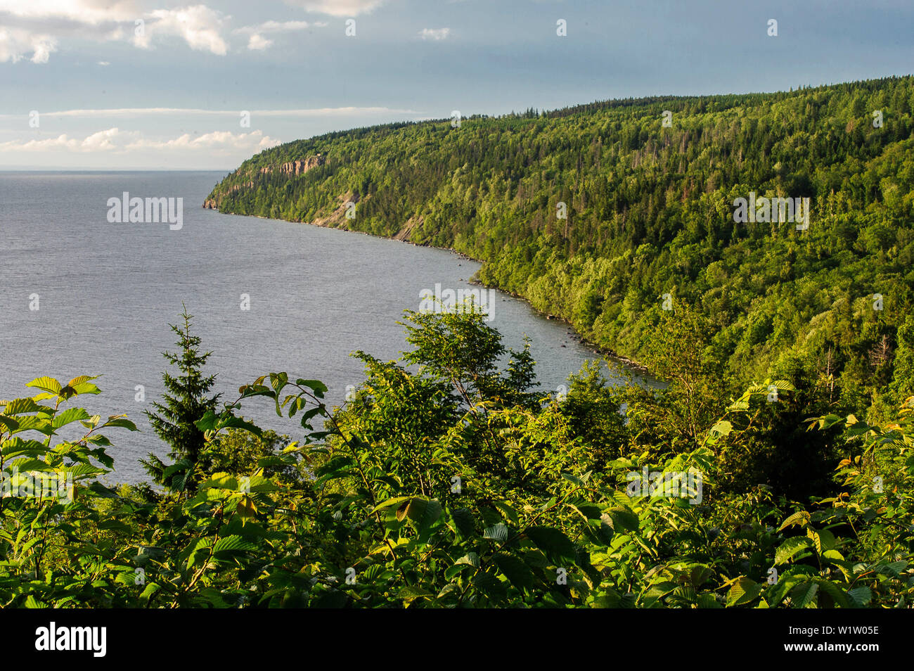 View On Steep Coast At The Omberg Lake Vattern Ostergotland Sweden Stock Photo Alamy