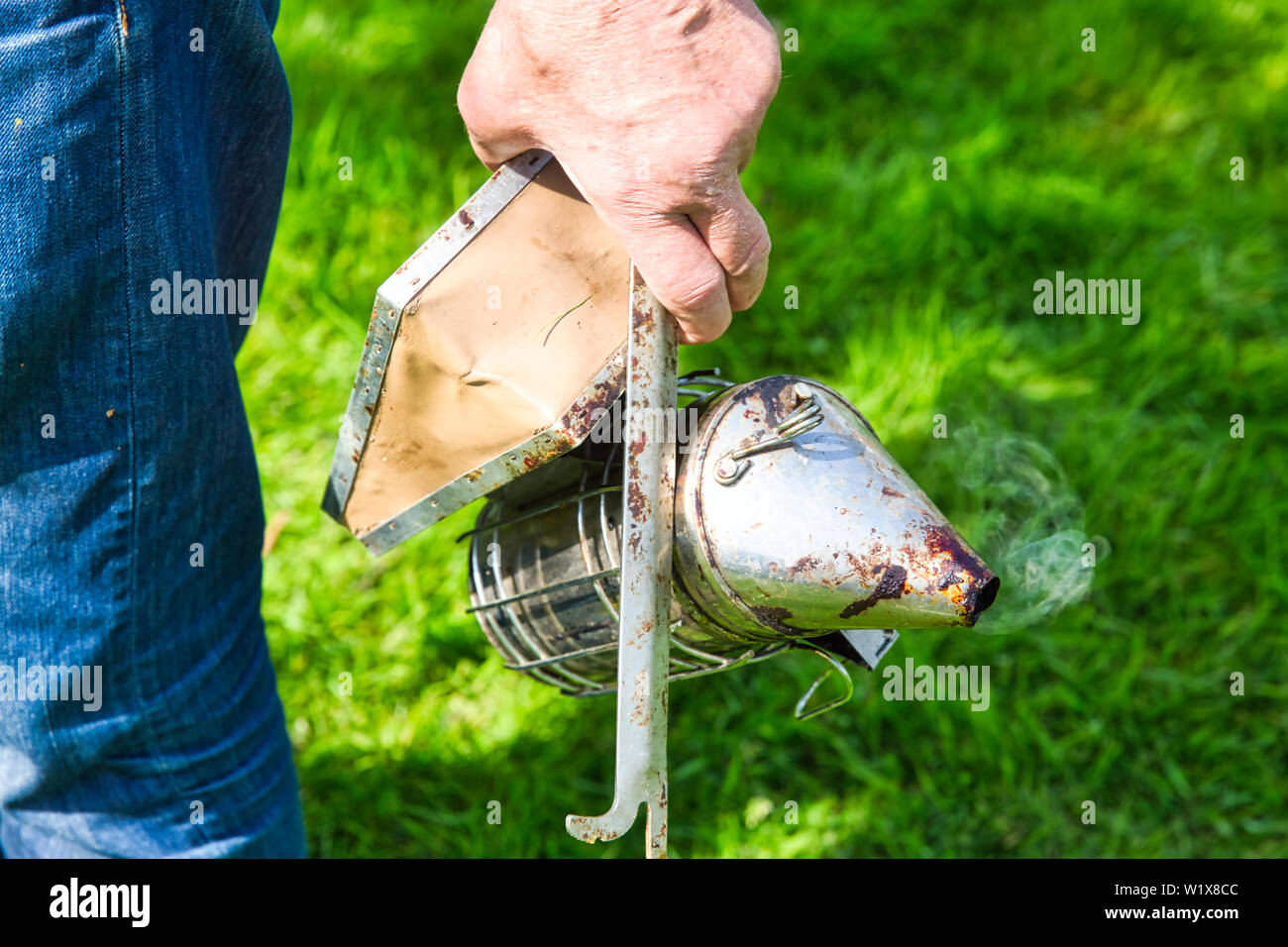 Hand of beekeeper in protective clothing switching on the old smoker with brush on grass garden. Smoke to transfer bees, to visit a hive. Authentic tr - Stock Image