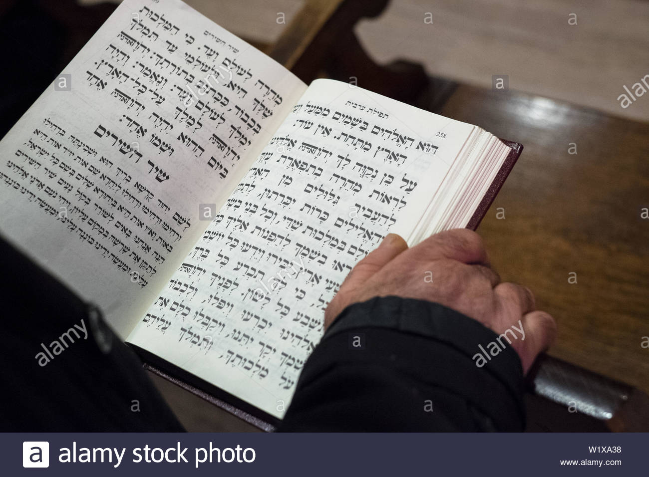 Marseille (south-eastern France): the Great Synagogue. Jewish man reading the Torah in Hebrew - Stock Image