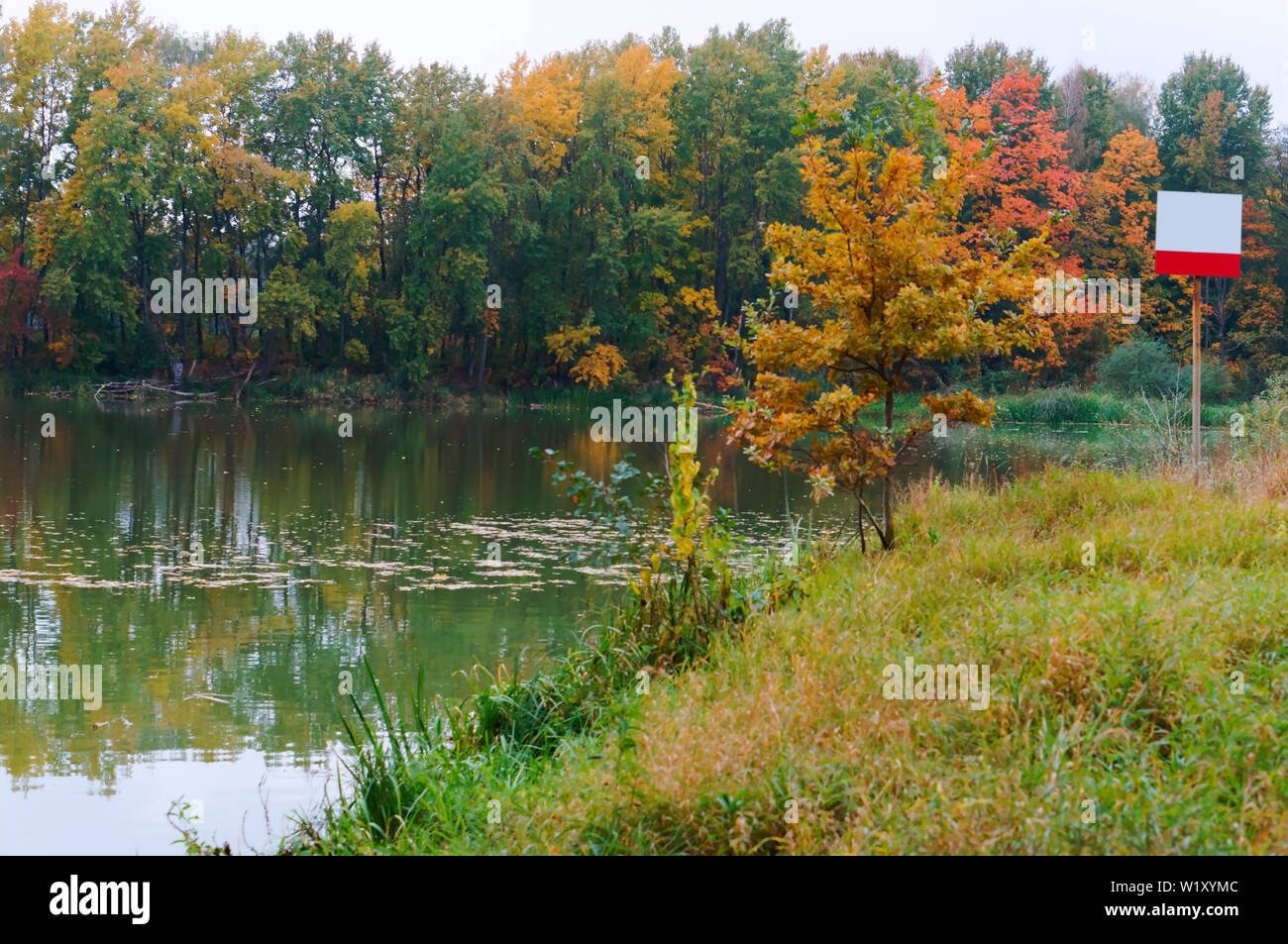 information plate on the lake, lake in the forest, autumn forest Stock Photo