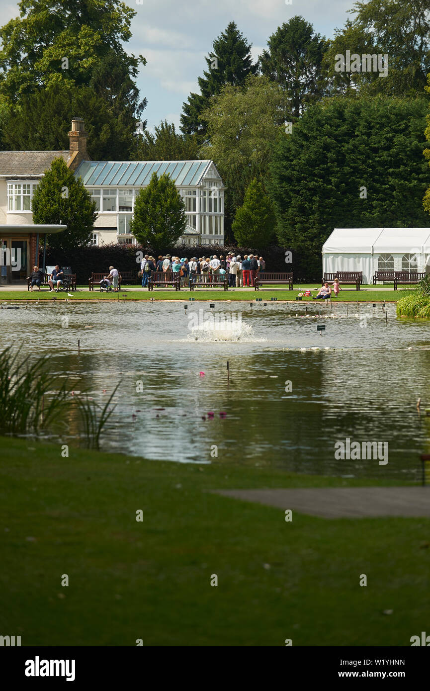 Large crowds of people at Burnby Hall Gardens, beginning a conducted tour of the water gardens which comprise the National collection of water lilies. Stock Photo