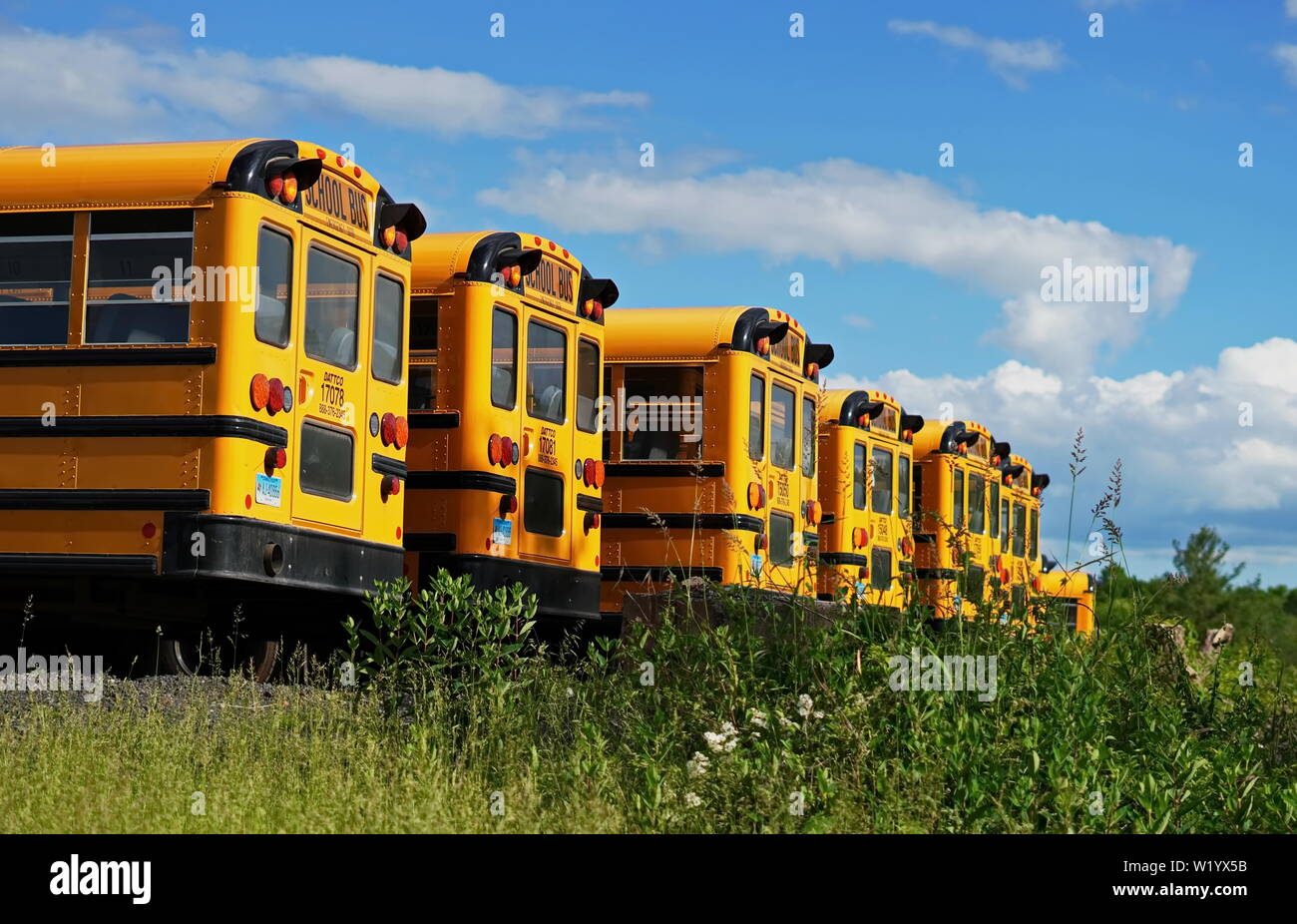 Middletown, CT / USA - June 6, 2019: Row of yellow school buses in a parking lot Stock Photo
