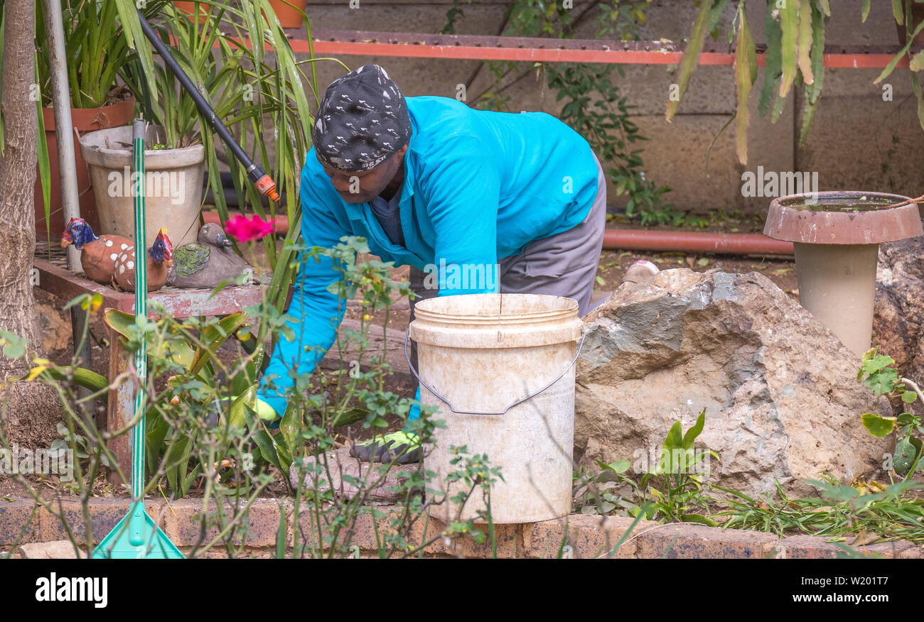 Johannesburg, South Africa - an unidentified black male migrant worker does manual work in a domestic garden in the city - Stock Image