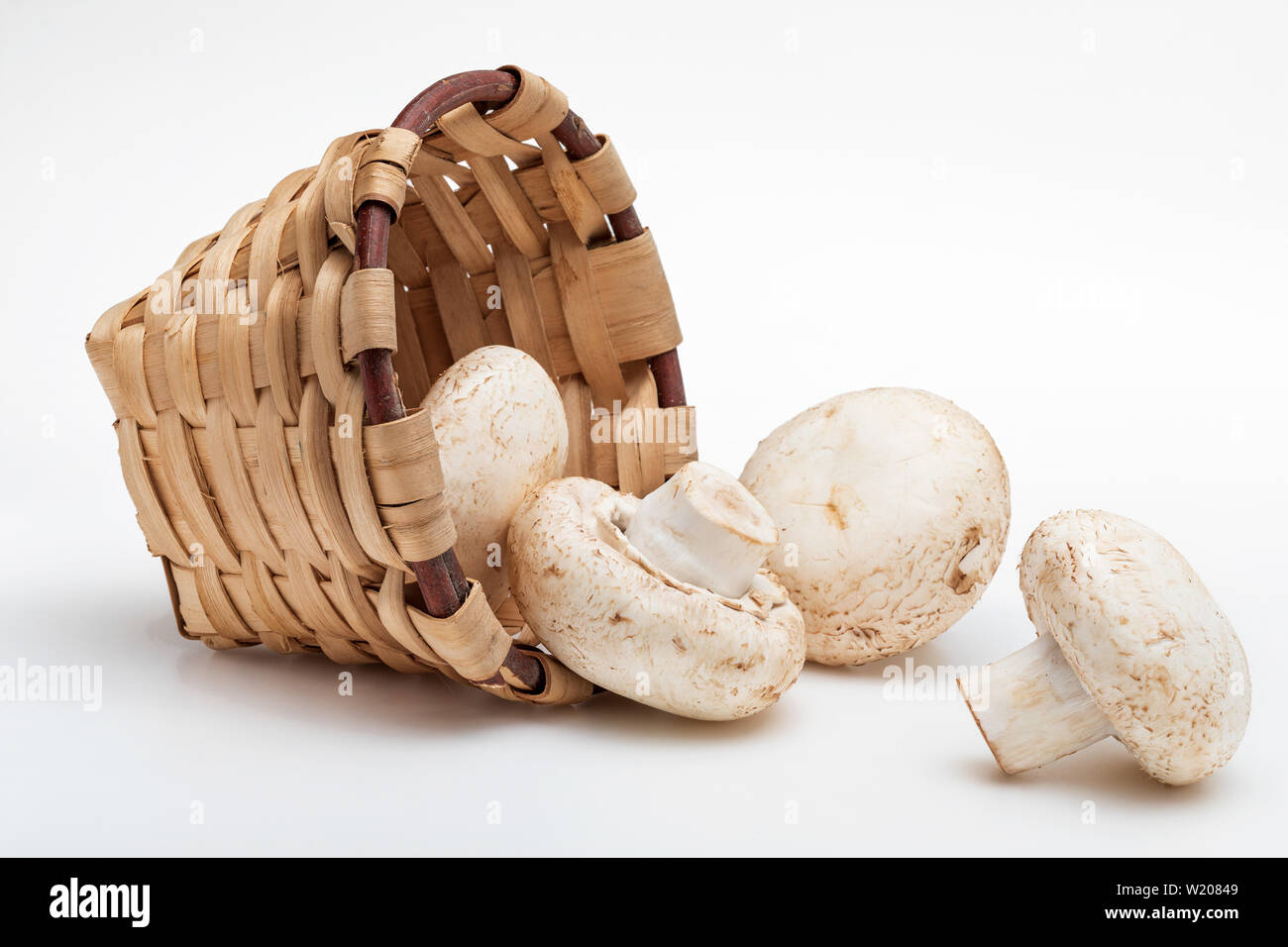 Wicker basket with mushrooms (champignon, cut feet, Agaricus Bisporus) raw (uncooked). Foreground. Isolated on white background. - Stock Image