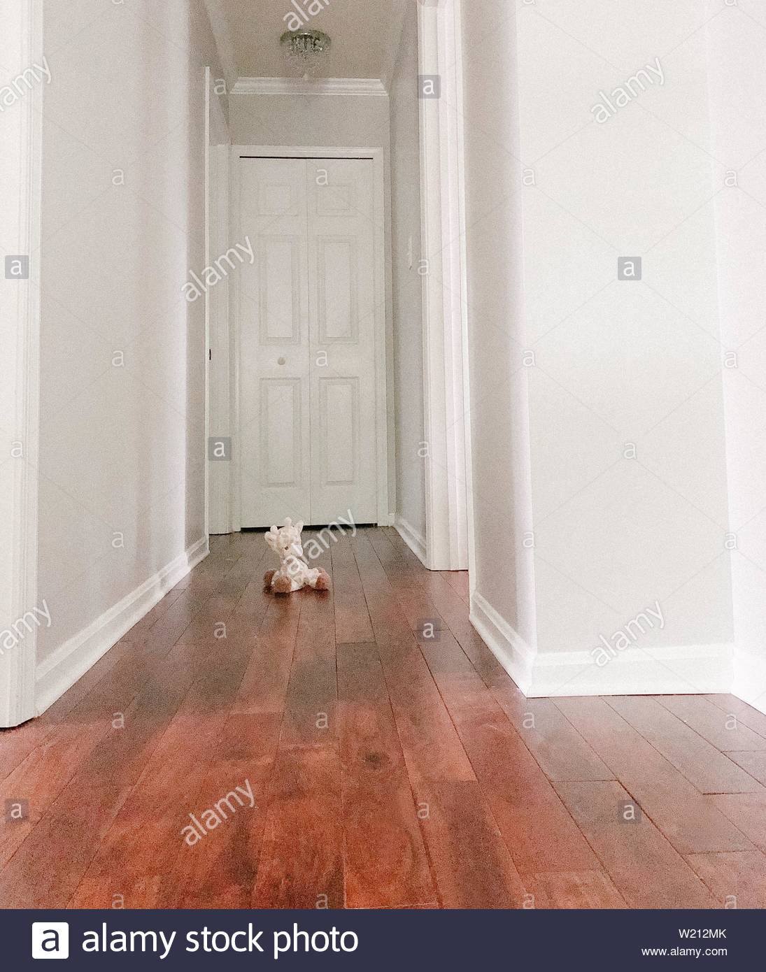 stuffed animal in middle of hall - Stock Image