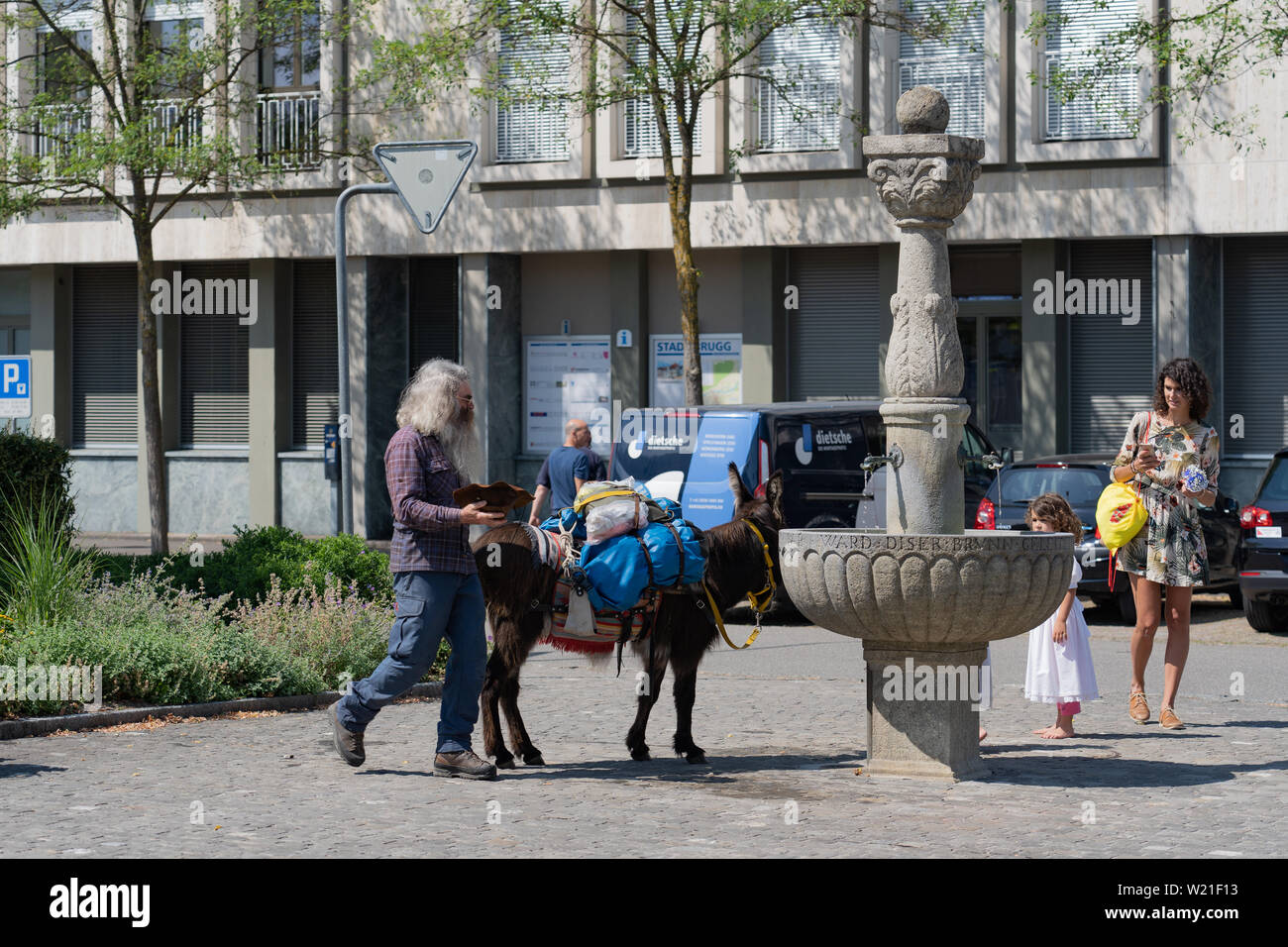 donkey as special guest on holiday of youth brugg Stock Photo