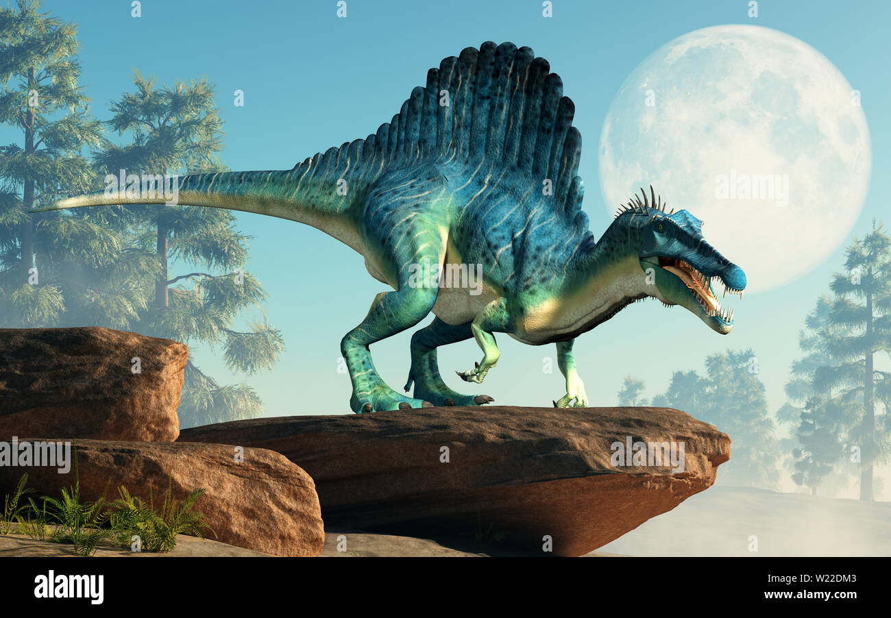 A spinosaurus on a cliff by the moon. Spinosaurus was semi-aquatic dinosaur from the Cretaceous period. It was one of the largest carnivorous dinos. - Stock Image