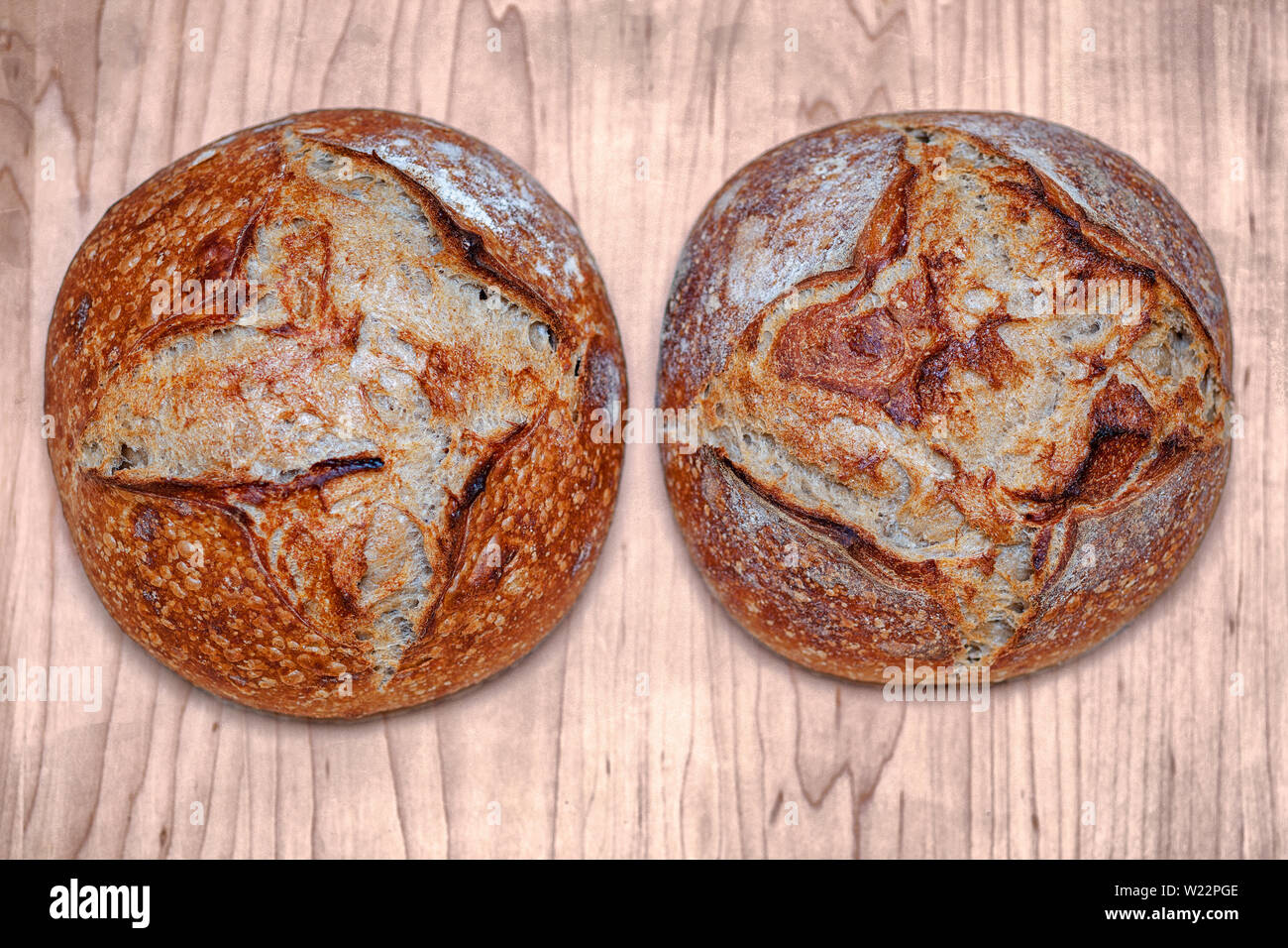 Pair of two baked Artisan loaf of traditional Homemade sourdough Boule bread loafs with crust on a wooden board Stock Photo