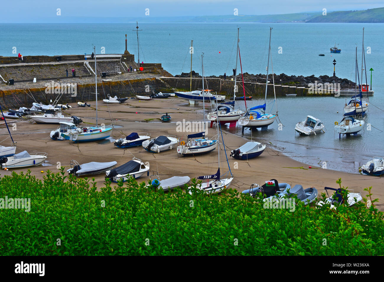 A view of the pretty little harbour at Newquay in West Wales, at low tide. Sandy beach and stone breakwater. Assorted leisure craft & fishing boats. Stock Photo