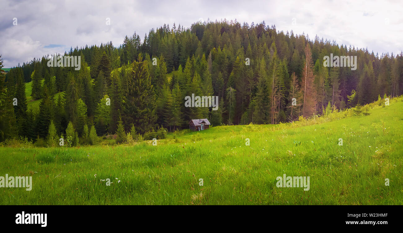 Scenic view of Carpathian mountains nature, an old house on the valley surrounded by coniferous forest on the hills. Sunny spring day with green grass - Stock Image